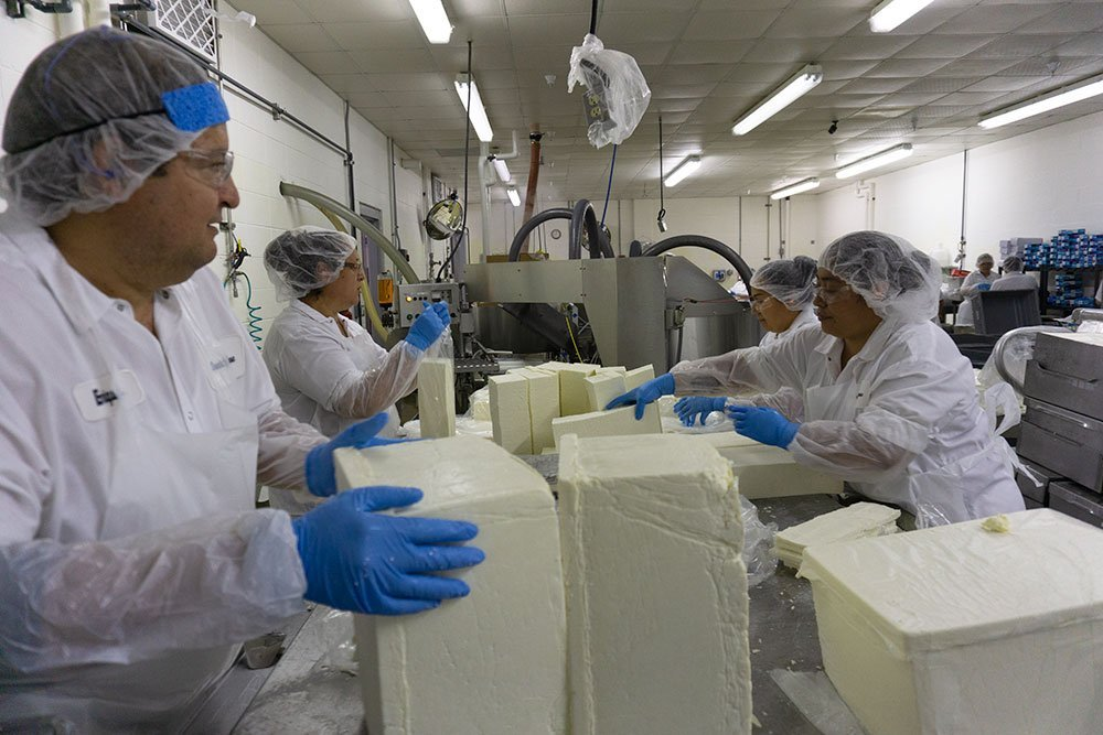 Factory workers preparing cheese products.